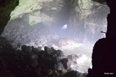 Sea Lions Cave