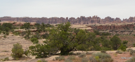 Canyonlands Needles
